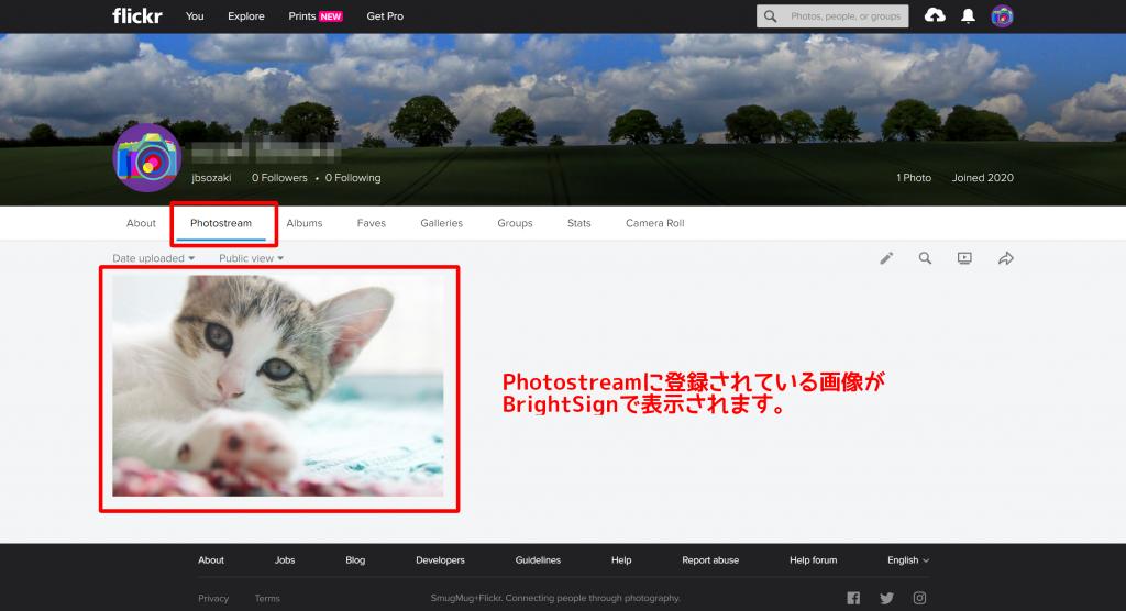 FrickrのPhotostreamページ
